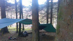 School Trips Wales: Bushcraft